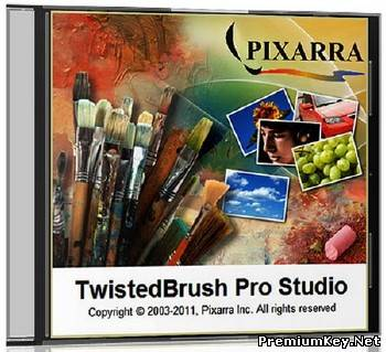 TwistedBrush Pro Studio 19.13 Portable (2012/ENG)