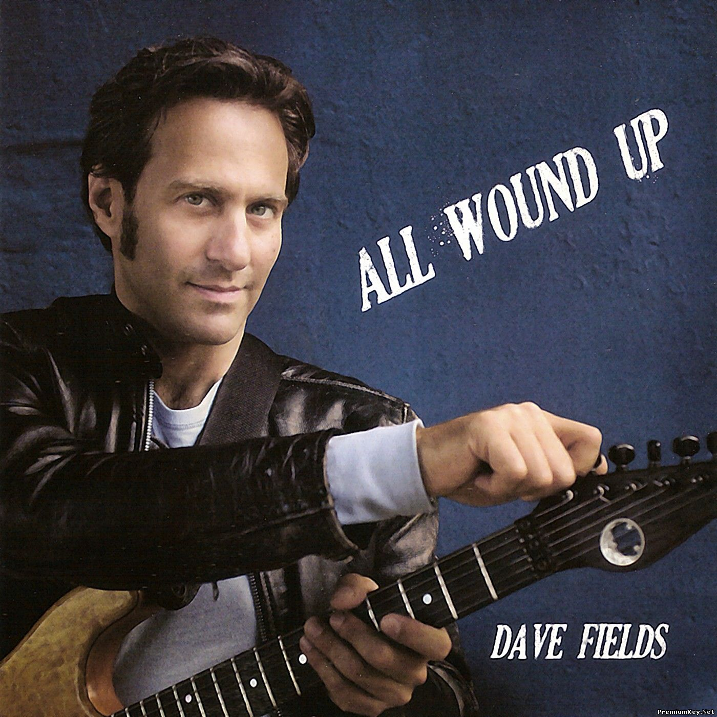 Dave Fields - All Wound Up (2008)