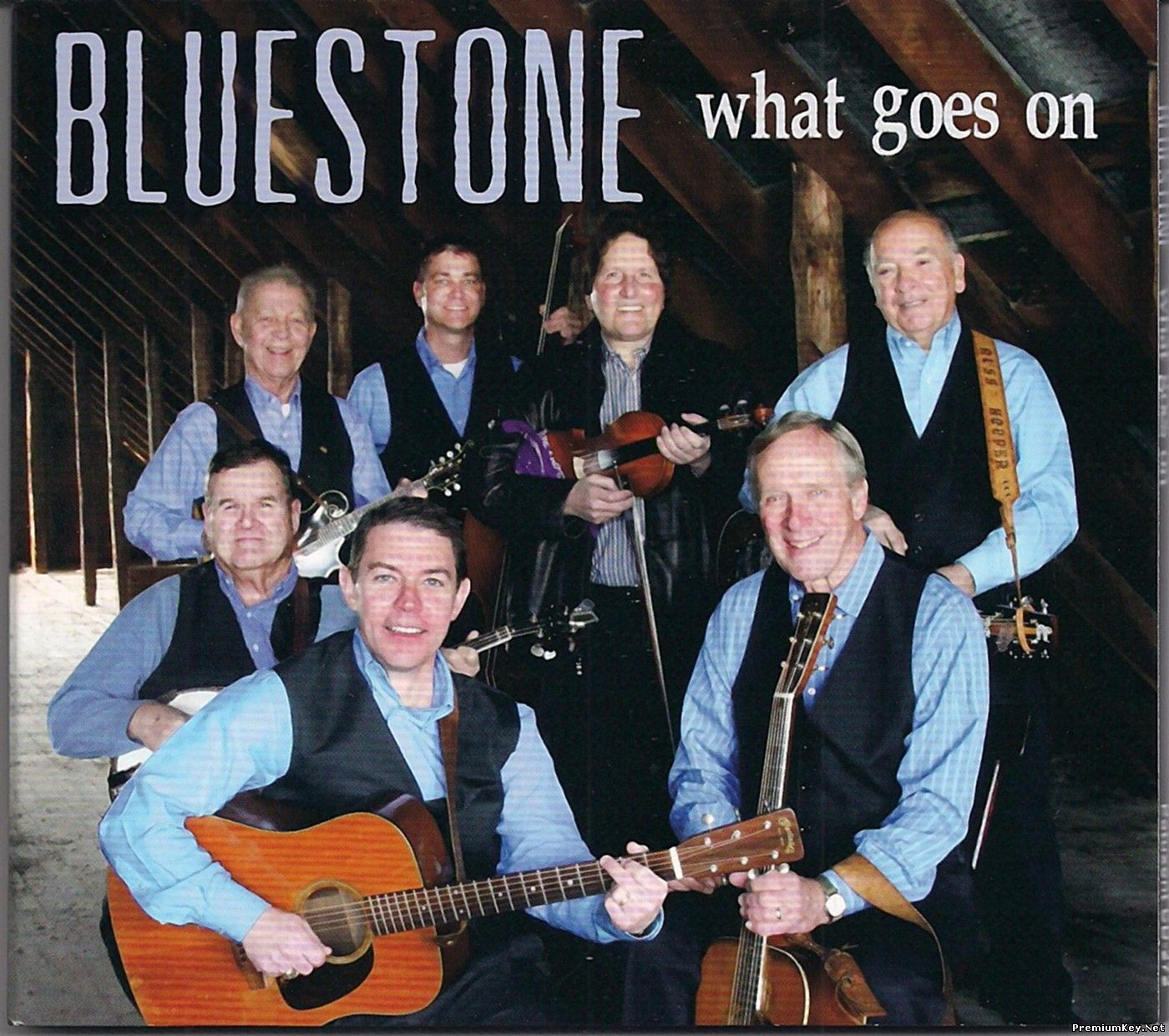 BlueStone - What Goes On (2015) (Lossless)