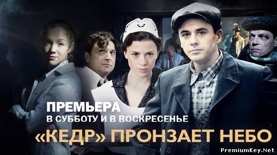 Фильм Кедр Пронзает Небо Скачать